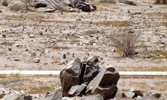 19 - The Battle of Badr