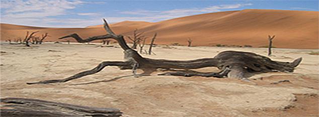 Arabia in the Pre-Islamic Period
